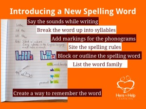 Spelling Strategies 2.009
