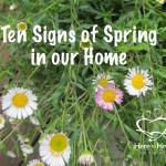 Ten Signs of Spring in our Home
