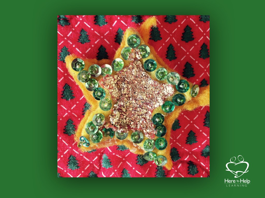 Creating Christmas Traditions.004