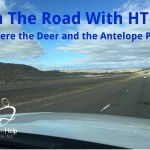 On The Road With HTHL: Where the Deer and the Antelope Play