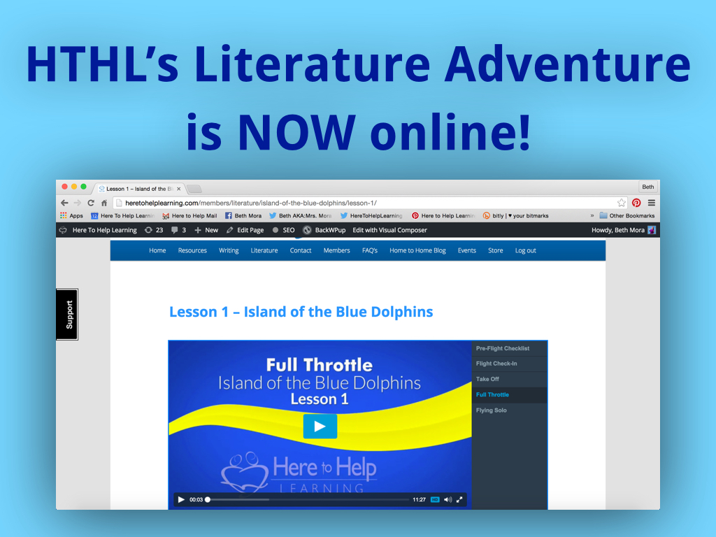 writing process archives here to help learninghere to help learning hthl literature adventure island of the blue dolphins