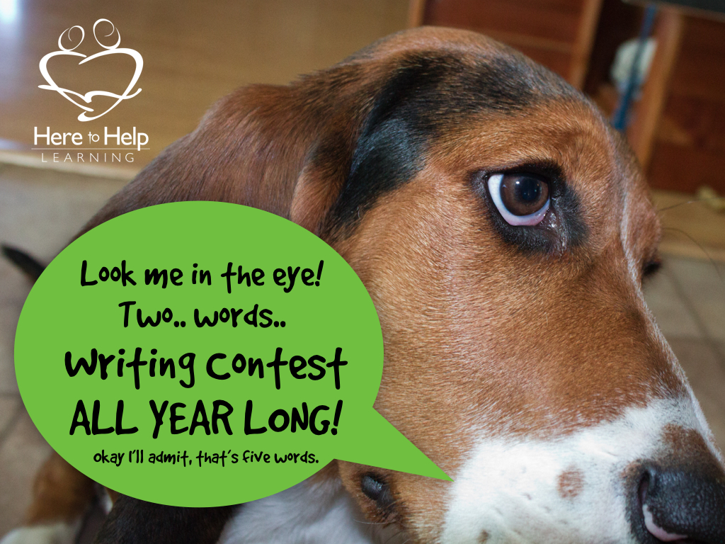 HELP!!!!! I need to do 2 writing contests for english class by June 15!!!?