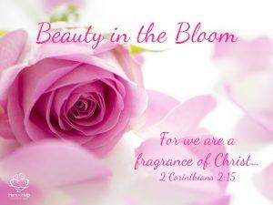 Exquisite Fragrance 1.001